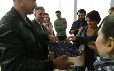 Découverte de la filière prune en Moldavie
