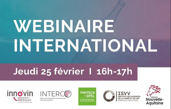 Webinaire développement à l'international: le jeudi 25 février à 16h