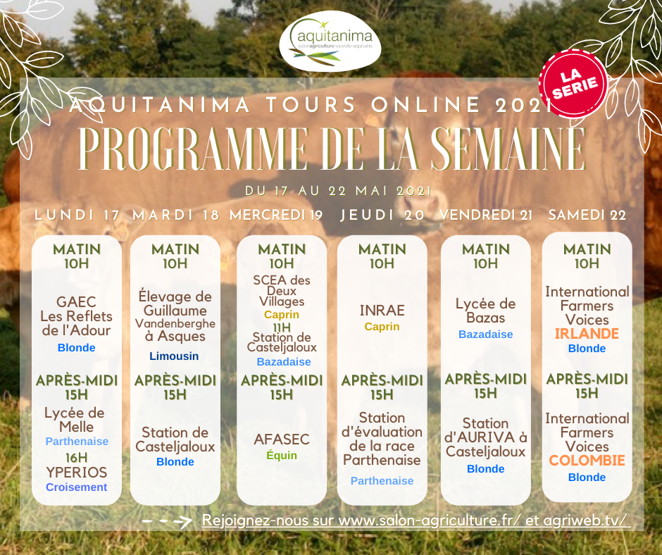 Programme 2ème semaine: Aquitanima Tours Online 2021