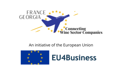 Webinar of the project «France-Georgia: Connecting Wine Sector Companies»